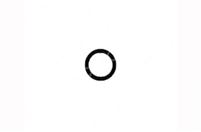 Fujinon® compatible 700' #56 Seal Ring