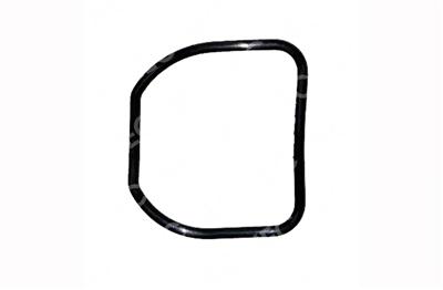 Fujinon® compatible 700' #40 Seal Ring